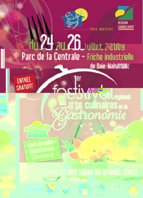 Guadeloupe Exposition 1er Festival R Gional Des Arts Culinaires
